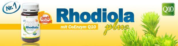 kopfschmerzen rhodiola rosea